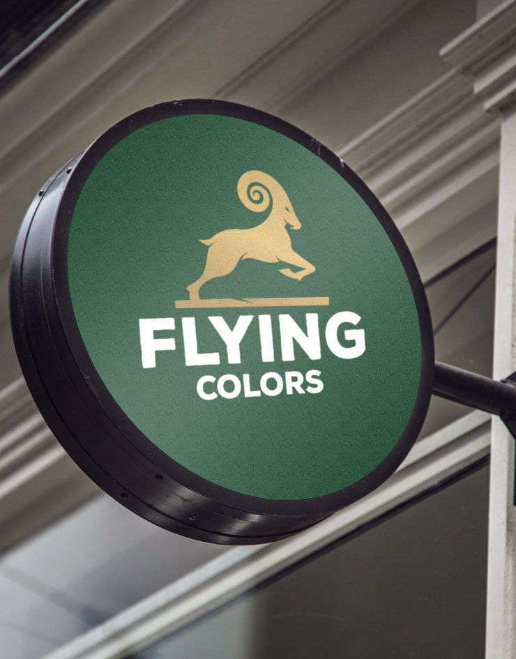 flying-colors2