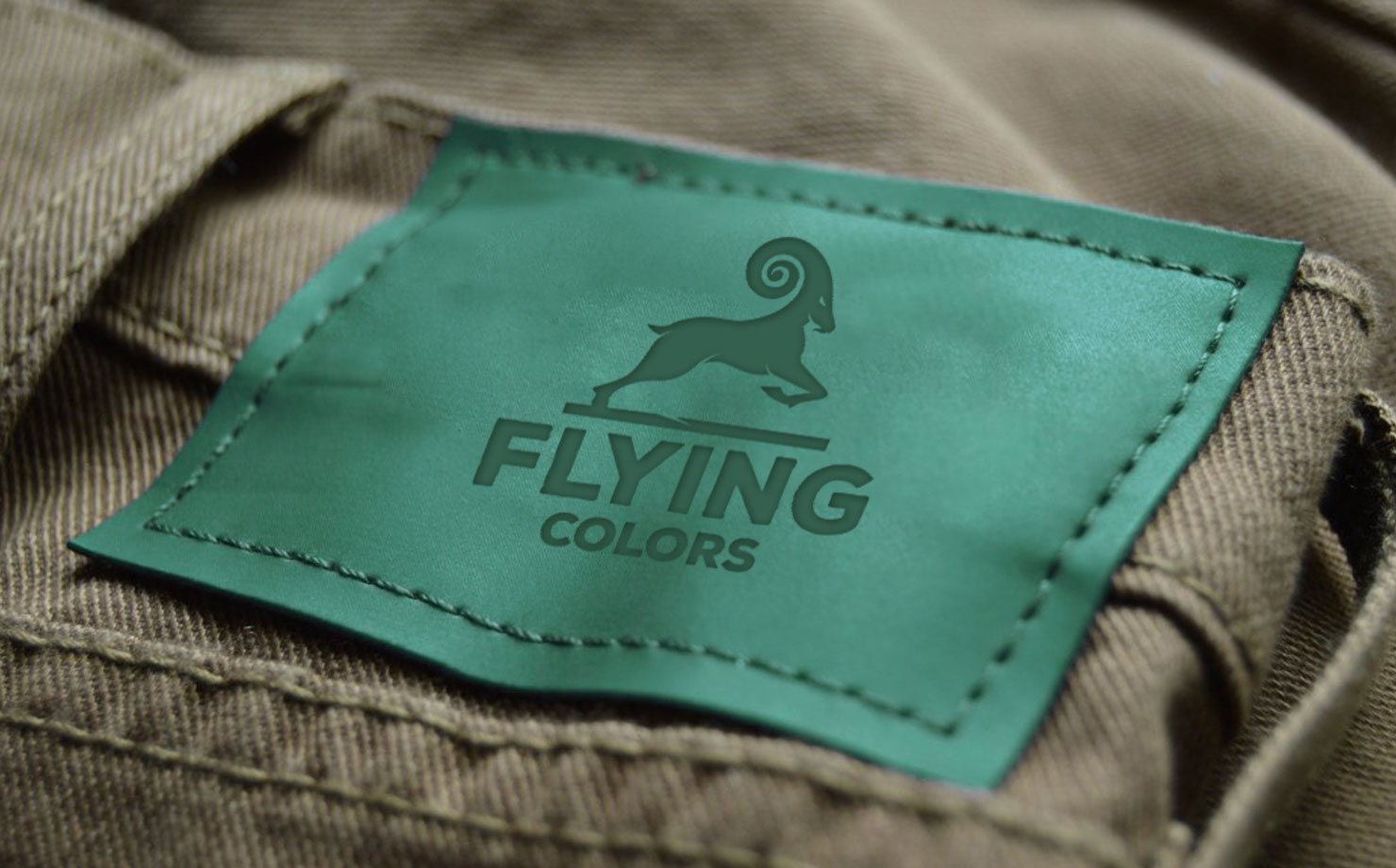 flying-colors9