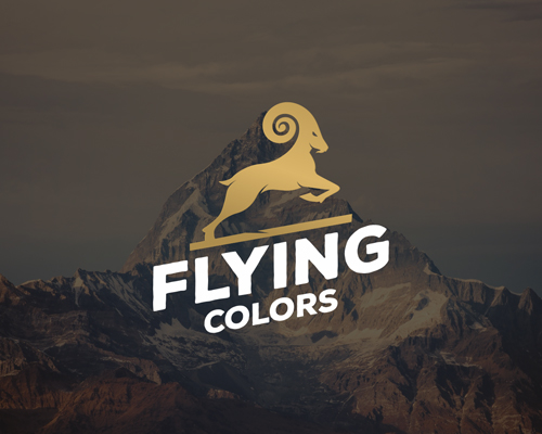 flyin-color-logo-design